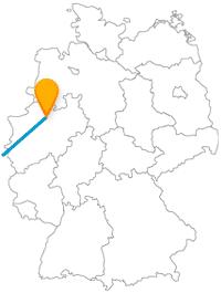 Bei der Reise mit dem Fernbus zwischen Münster und Paris stehen Promenadengänge auf dem Programm.
