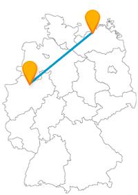 Bus Münster Rostock Im Bahn Vergleich Busliniensuchede