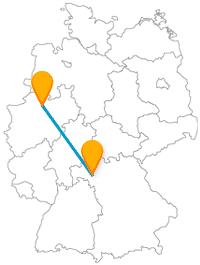 Bei der Reise mit dem Fernbus zwischen Münster und Würzburg können Sie Tieren ganz nahe sein.