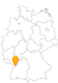 Mit dem Bus Rastatt erreichen Sie eine moderne Stadt mit einigen historischen Sehenswürdigkeiten und können auch mit einer Fähre nach Frankreich fahren..