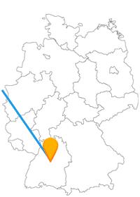 Für diese Reise lohnt es sich, die ganze Familie im Fernbus Rotterdam Stuttgart mitzunehmen.