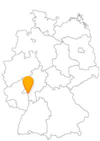 Eine Fahrt im Fernbus Rüsselsheim ist auch gleichzeitig eine Busfahrt nach Frankfurt.