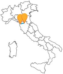 Visita la Toscana con un bus tra Firenze e Pisa